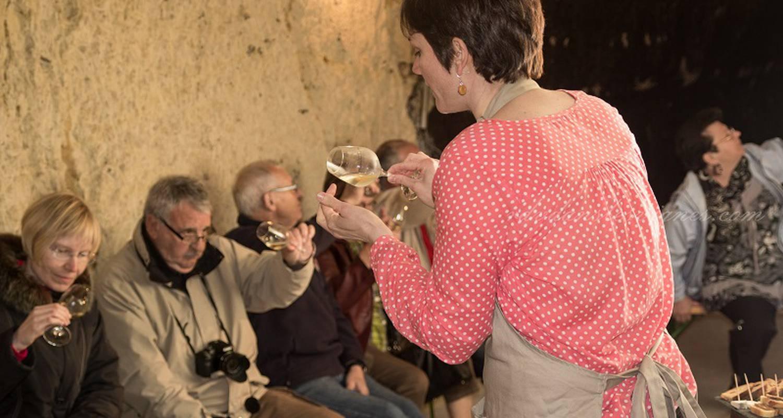 Activité: rendez-vous dans les vignes à chançay (126533)