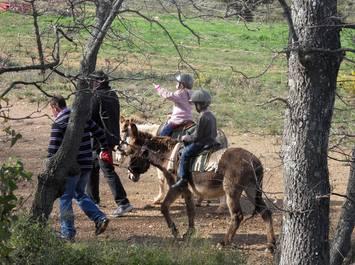 La ferme aux ânes