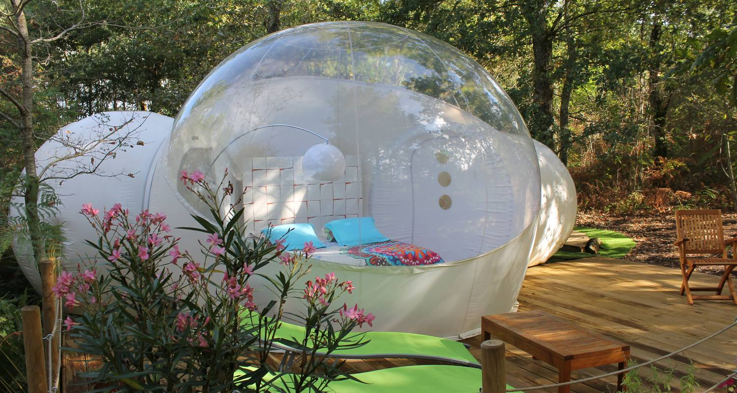 Bed & breakfast: au pays des bulles in montendre (126585)