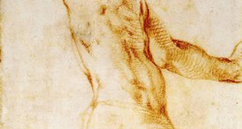 Activité: stage de dessin à saint-laurent-du-verdon (126608)