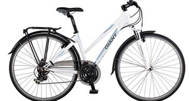 Activité: excursiones en bicicleta y alquiler de bicicletas a lo largo del canal du midi. en béziers (126864)