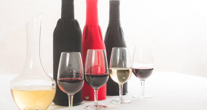 Activité: dégustation de vins oenologie à molineuf (126937)