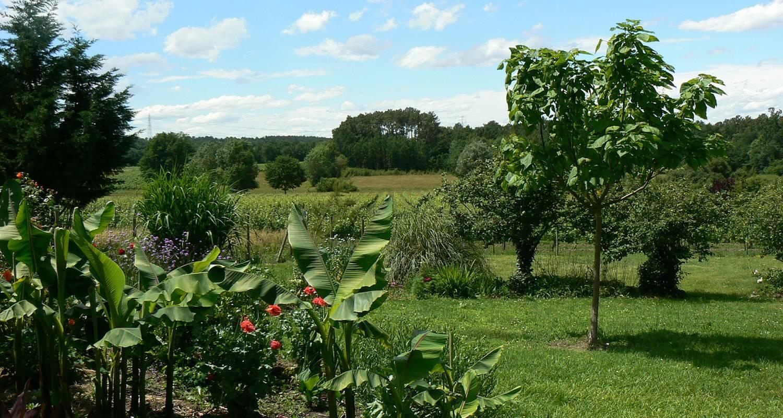 Gîte: domaine de geneviève de vignes in saint-martin-de-gurson (127173)