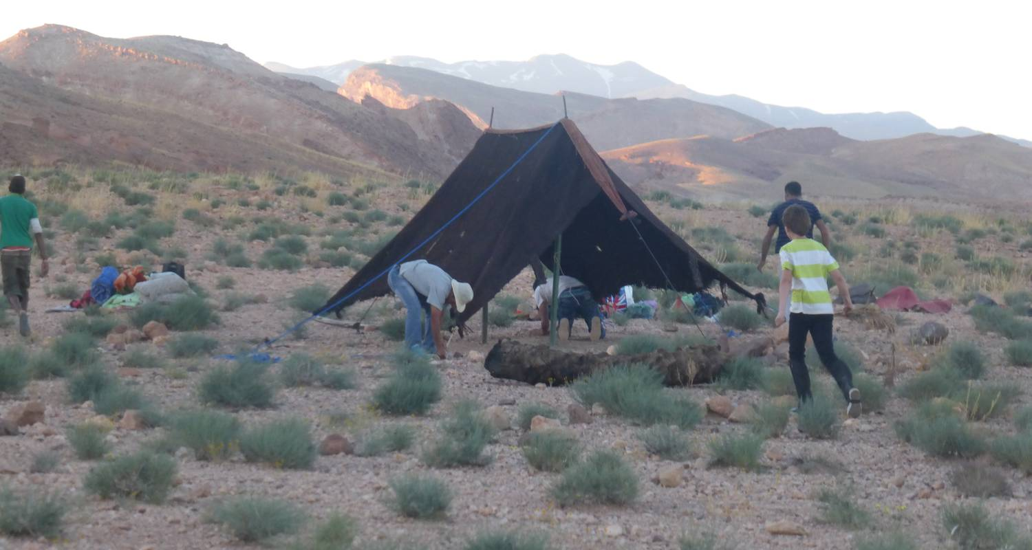 Activity: bivouac à cheval  in ouarzazate (127033)