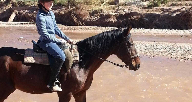 Activité: stages à cheval à ouarzazate (127034)