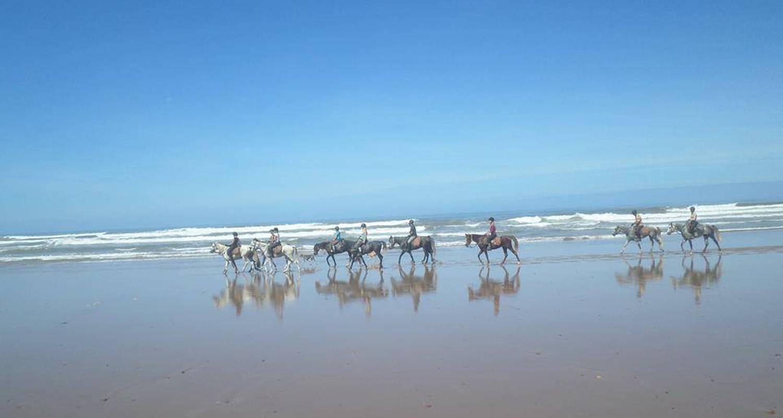Activité: equitation à mirleft (127041)