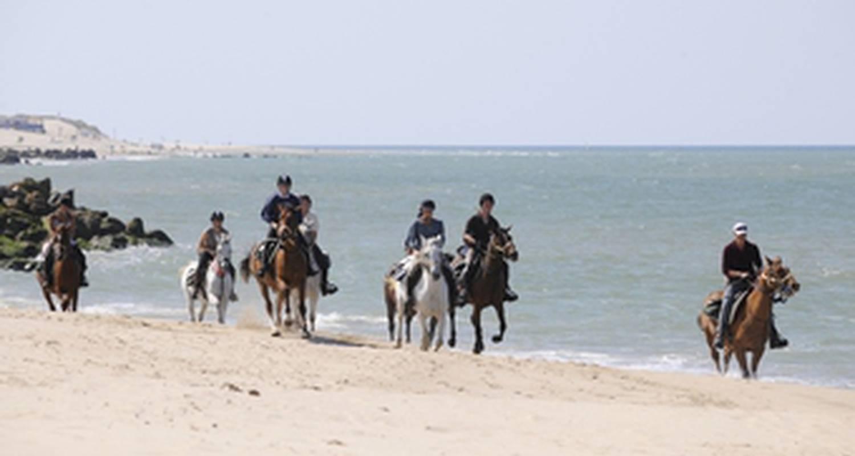 Activité: randonnée équestre 100% plage en medoc à saint-vivien-de-médoc (127101)