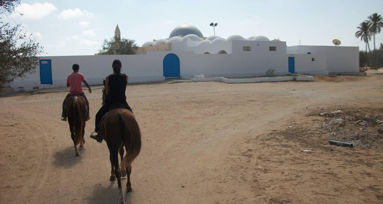 Activité: séjours équitation à matemale (127265)