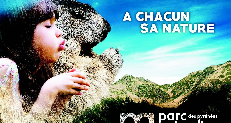 Activité: parc animalier en argelès-gazost (127334)