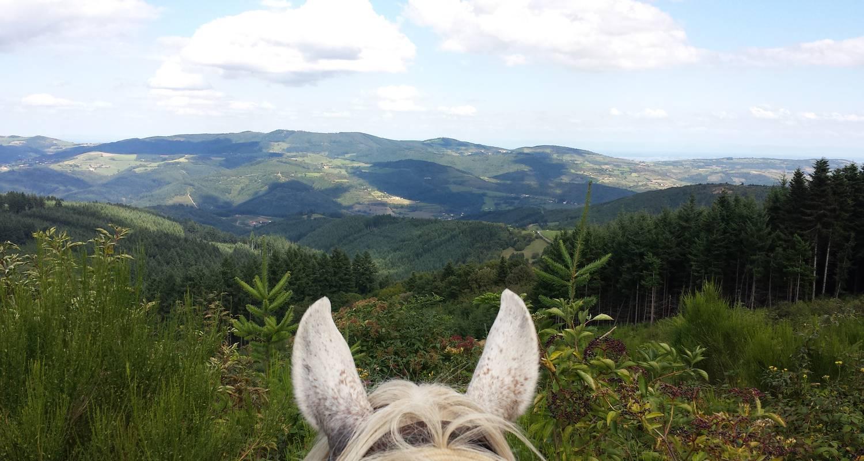 Activity: cheval d'azergues  balades et randonnées à cheval in chamelet (127422)