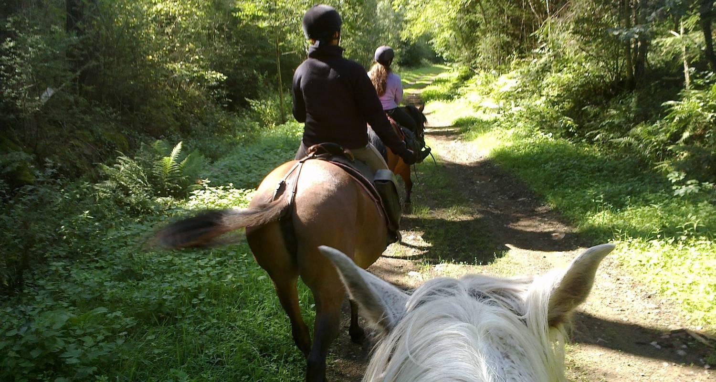 Activité: cheval d'azergues  balades et randonnées à cheval à chamelet (127424)