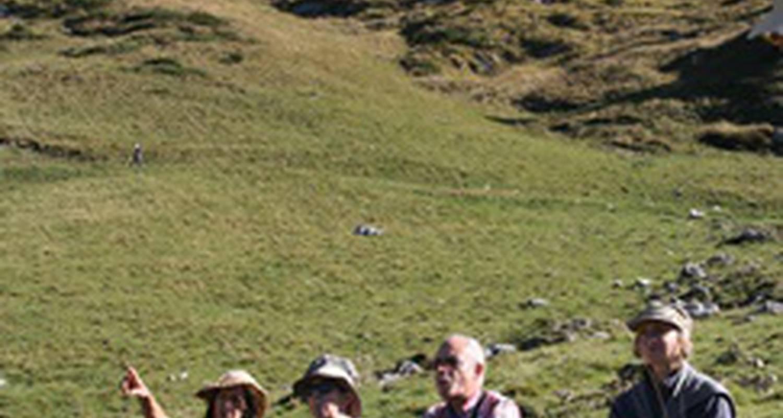 Activité: stage de méditation marchée en moyenne montagne ( marche consciente et afghane ) en biert (127802)