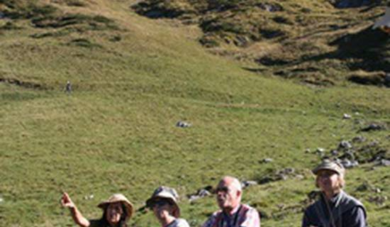 Stage de méditation marchée en moyenne montagne ( marche consciente et afghane )