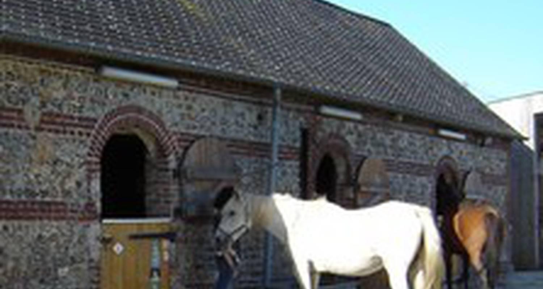 Gîte:  eco-gîtes équestres de  la jumenterie des néfliers  à mentheville (127839)