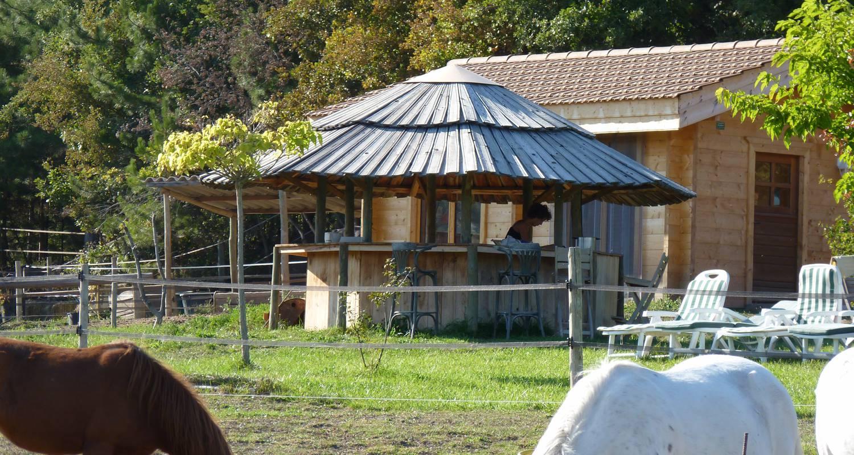 Gîte: au milieu des chevaux et des poneys in ventavon (128739)