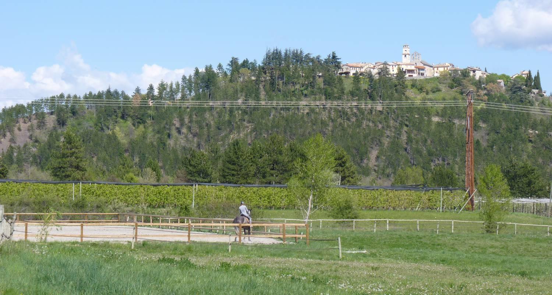 Gîte: au milieu des chevaux et des poneys in ventavon (128735)