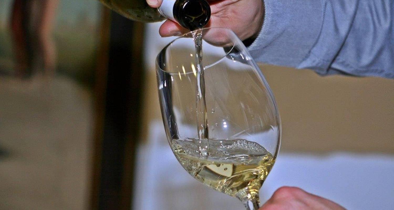 Activité: sejour connaissance du vin en nîmes (129579)