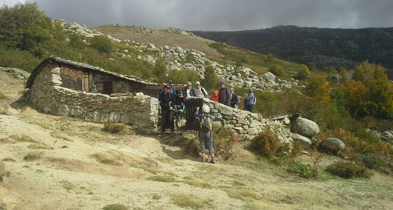 Activity: montagnes & merveilles de l'alta rocca: traversée du plateau du cuscionu et nuitée en cabane in quenza (129830)