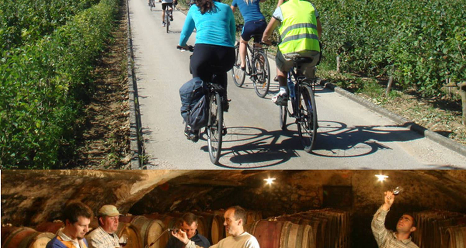 Activity: bike and wine tour in burgundy in beaune (129929)