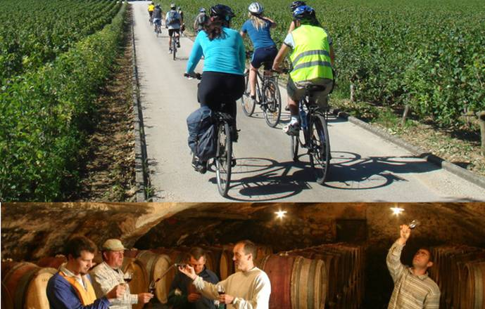 Bike and wine Tour in Burgundy