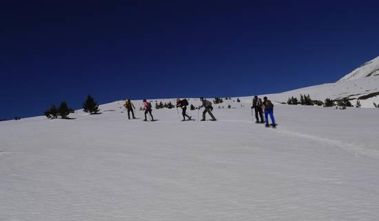 Randonnée raquettes à neige