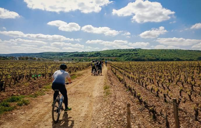 Bike in burgundy