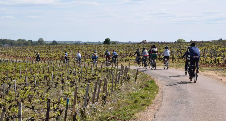 Activity: balade oenologique à vélo  in chenôve (130002)