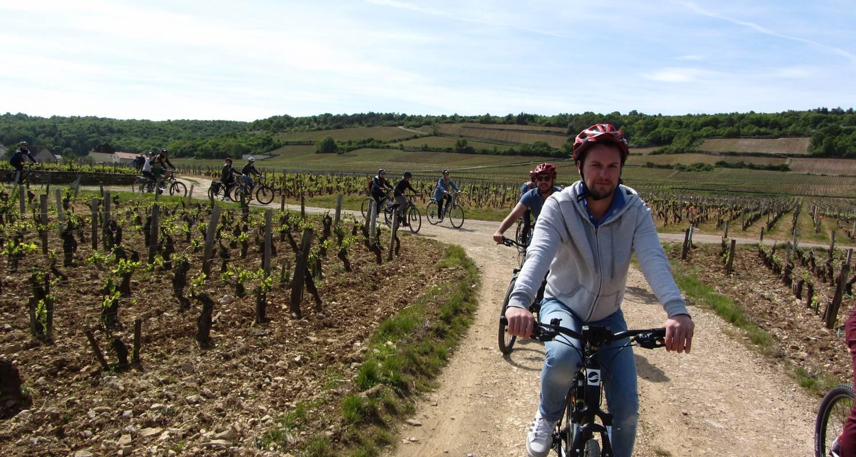 Activity: balade oenologique à vélo  in chenôve (130003)