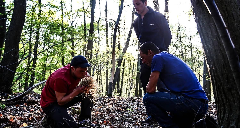 """Activity: stage de survie  """"en milieux naturels"""" in saint-symphorien (130007)"""