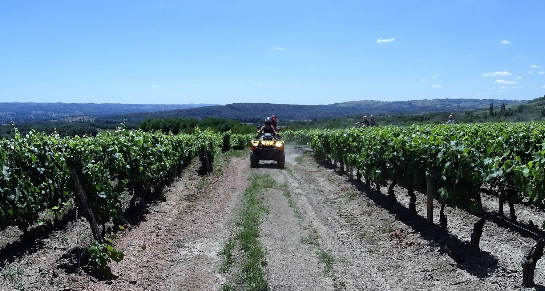 Activity: quad vignes et chateaux in couches (130163)