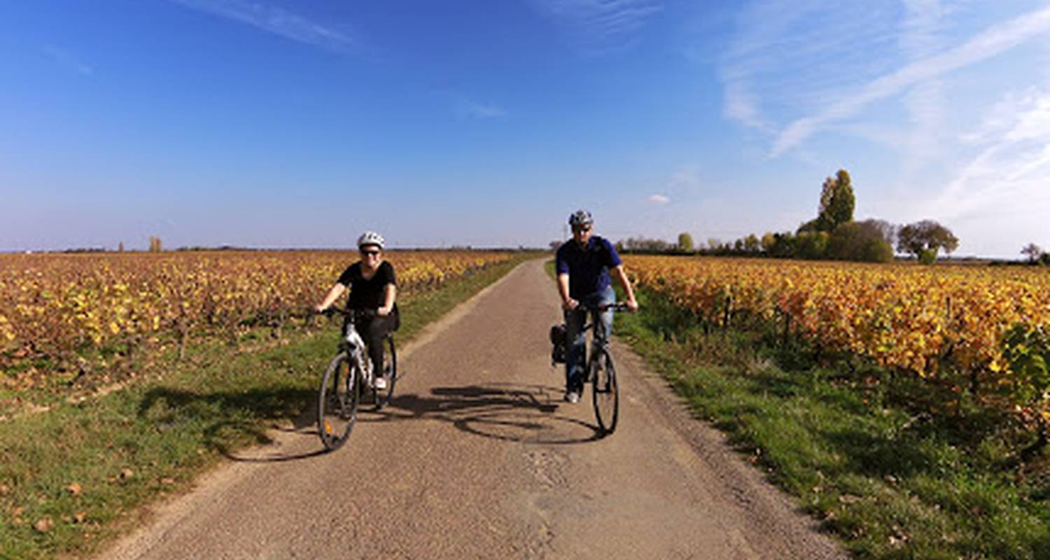 Activity: half day bike and wine tour in beaune (130240)