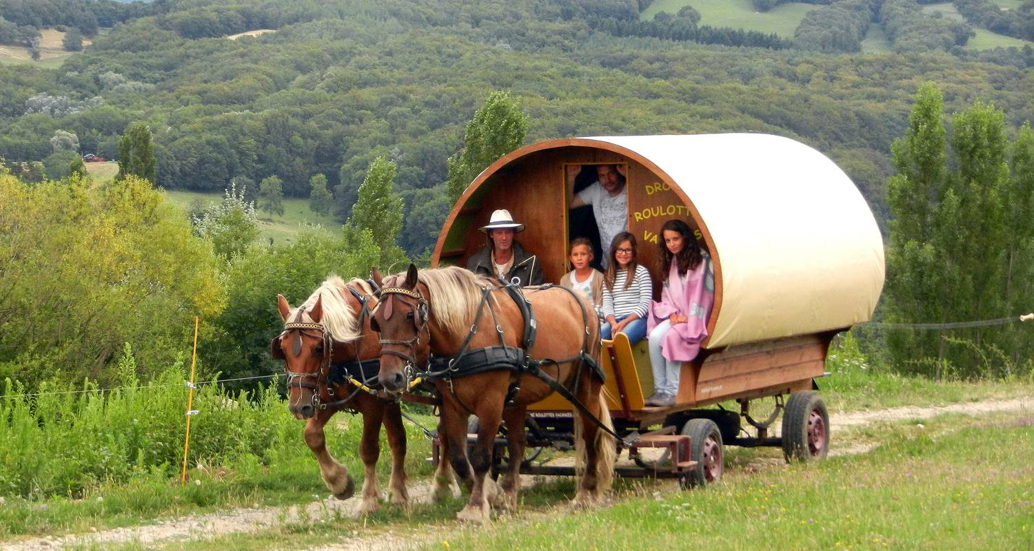 Activity: set off through the drôme countryside on a horse-drawn caravan.  anyone can enjoy our  excursions!  an experienced guide will ensure  a safe ride  in le poët-célard (130291)