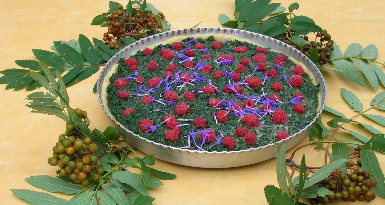 Activity: partez à la découverte des plantes médicinales/comestibles in saint-agnan-en-vercors (130766)