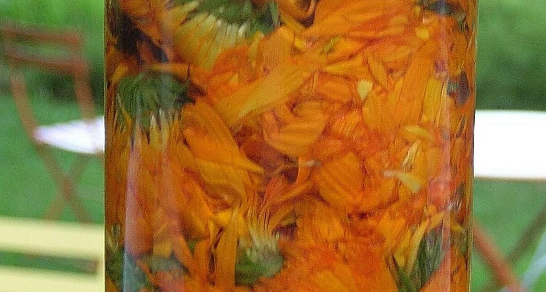 Activity: cueillez et transformez les plantes : de la plante au produit in la jarjatte (130757)