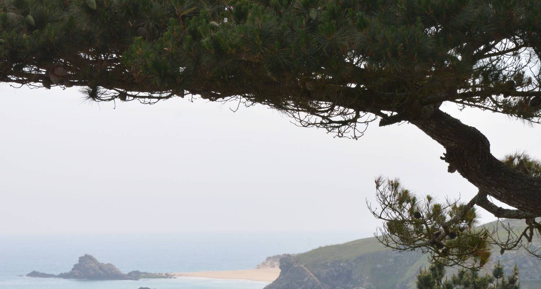 Gîte: semaine de relaxation en bretagne sud in férel (131060)