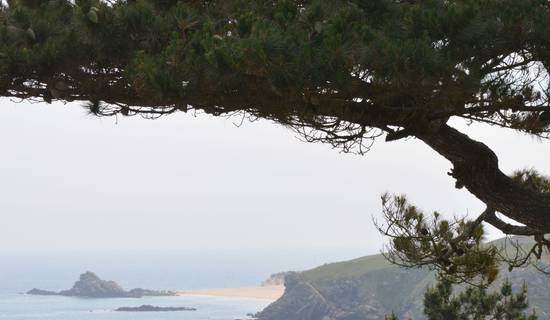 Semaine de relaxation en Bretagne Sud