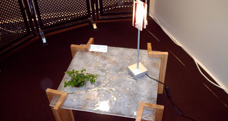 Activity: vitrail in bagnols-les-bains (131447)