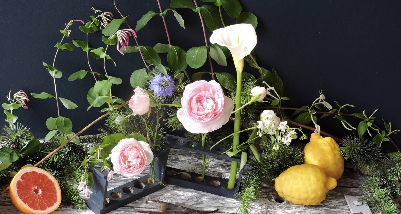 Activity: natural perfume creation workshop in romans-sur-isère (131715)