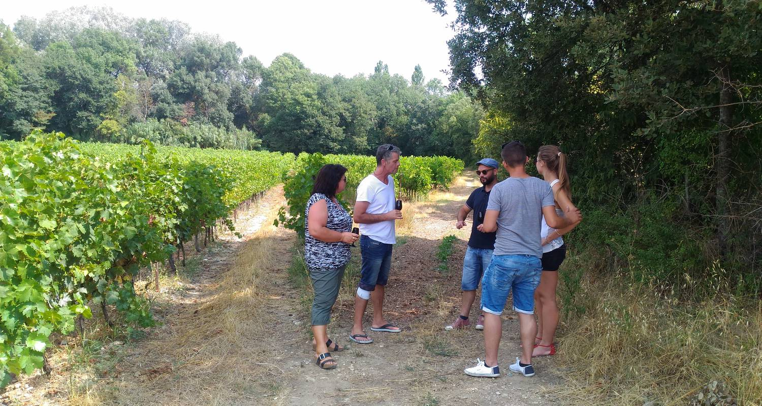 Activity:  vigno'vins, discovery of the vineyard of saint christol in 4x4 in saint-christol (131761)