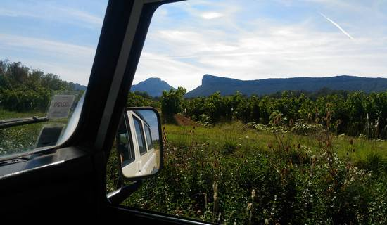 Vigno'vins, discovery of the vineyard of Pic Saint Loup in 4x4 picture