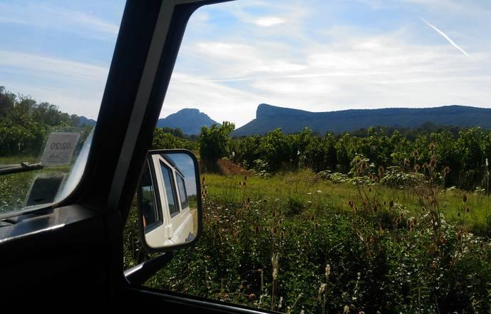 Vigno'vins, découverte du vignoble du Pic Saint Loup en 4x4