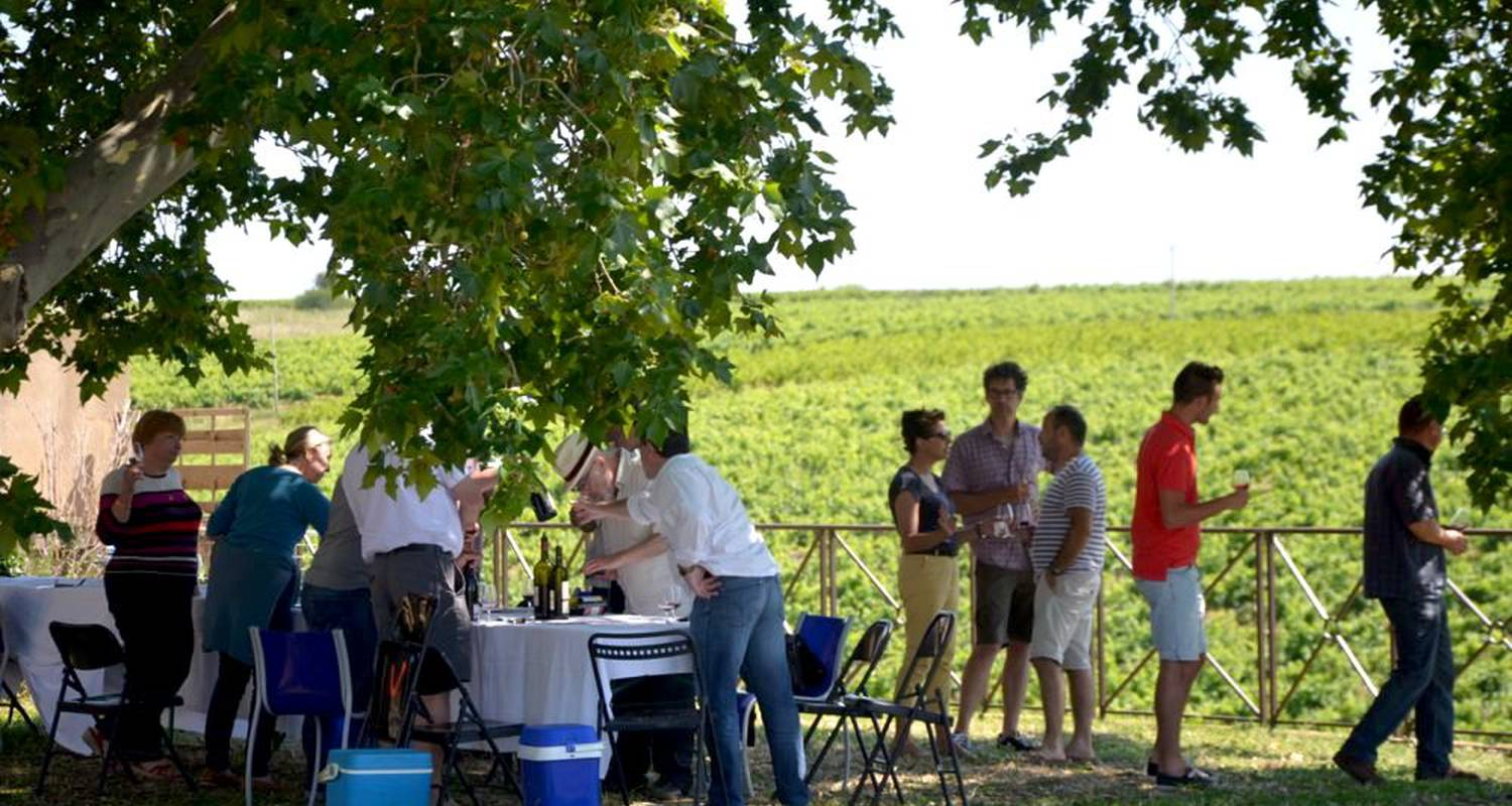 Activity:  vigno'vins, discovery of the organic vineyard in 4x4 in saint-laurent-d'aigouze (131777)