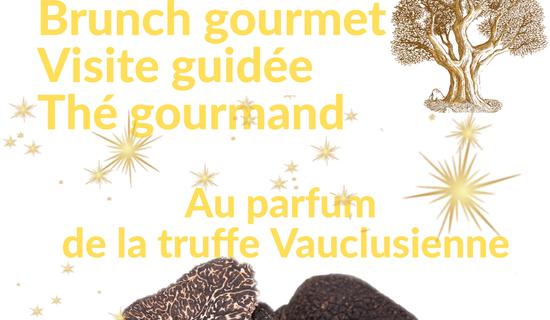 Au parfum de la truffe vauclusienne : journée découverte de la truffe photo