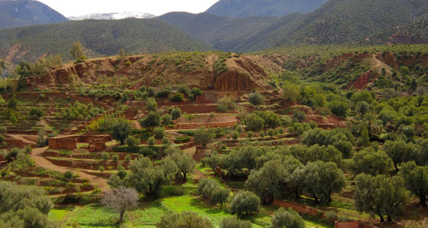 Activity: the valley of ouirgane – day trip in ouirgane, from marrakech in ouirgane (132281)
