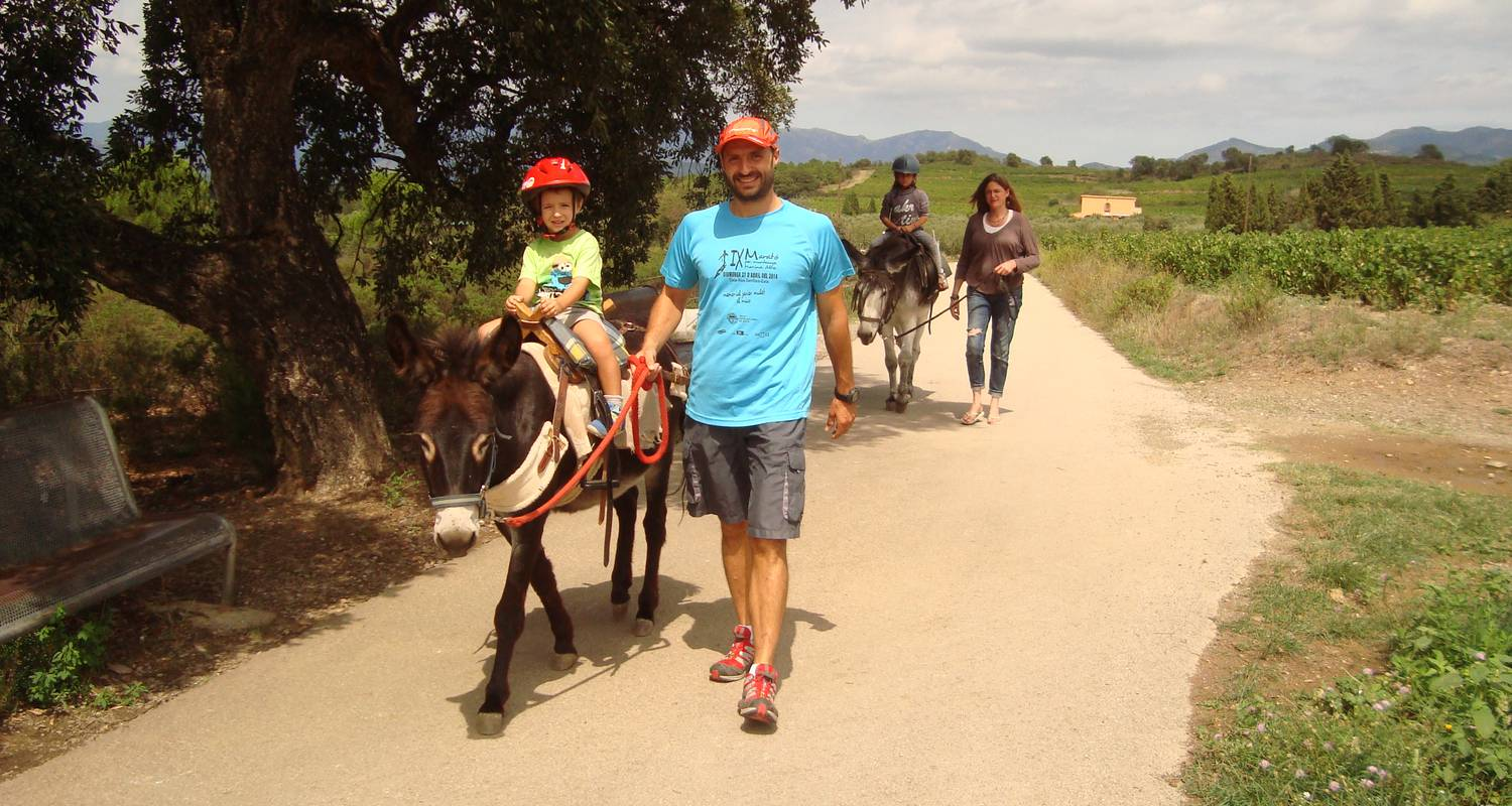 Activity: donkey riding and trekking in garriguella (132486)