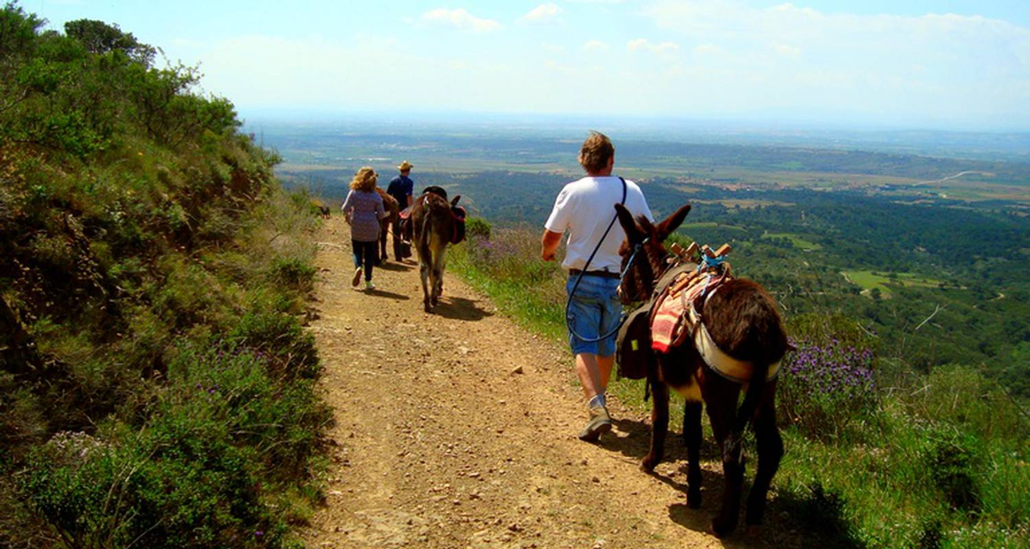 Activity: donkey riding and trekking in garriguella (132487)