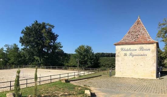 Le Pigeonnier du Château Picon foto