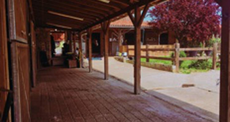 Gîte: le pigeonnier du château picon in eynesse (132847)