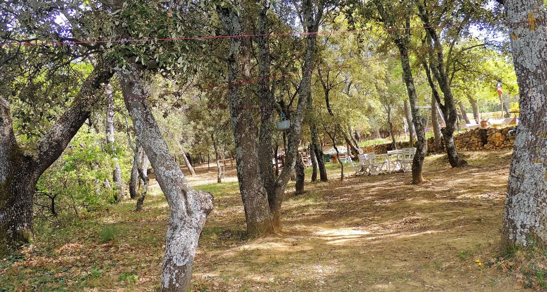 Habitación de huéspedes: les chênes verts  en la bastidonne (133221)