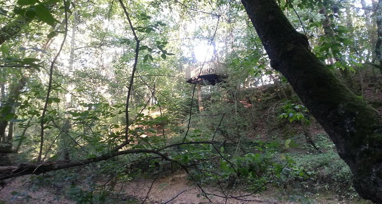 Chambre d'hôtes: landes cabanes sauvages à campet-et-lamolère (133456)